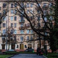 Дуб и дом :: Ирина Сивовол