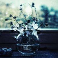Скучная погода :: Ирина Сивовол