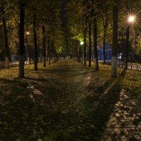 Осень в городе :: Сергей Бушуев