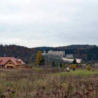Замок Штейнберг :: Ольга