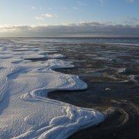 Белое море. Начало замерзания (3) :: Владимир Шибинский