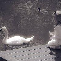 девочка и лебедь :: Сергей Кудряшов