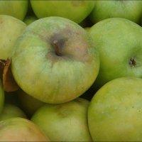 Зелёные яблоки :: Нина Корешкова