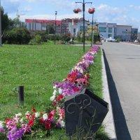 В парке г. Учалы :: Вера Щукина