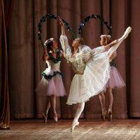 балет :: Михаил Бибичков