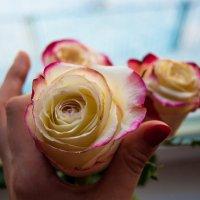 Дарите девушкам цветы... Фотограф Гуща Екатерина :: Екатерина Гуща