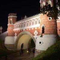 Фигурный мост ночью :: Галина R...