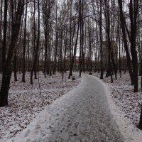 Последний день осени в парке :: Андрей Лукьянов