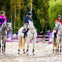 Три белых коня :: Анна Раневская