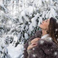 Снег :: Сергей Добрыднев