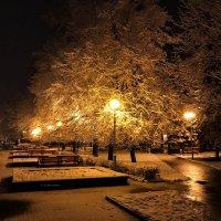 Зима.Начало. :: Игорь Чичиль