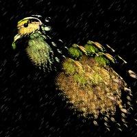 травоядная птичка) :: linnud