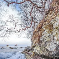 Приморский пейзаж :: Эдуард Куклин
