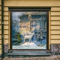 Декабрьские витрины. :: Вахтанг Хантадзе