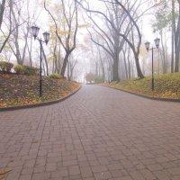 в парке :: Владимир Зырянов