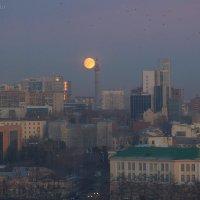 Луна полнявится :: StudioRAK Ragozin Alexey