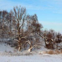 Зима :: Алексей Каравайцев