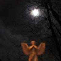 Сегодня ночью попытался, скозь тучи, увидеть супер-луну, которая бывает раз в году! :: Алекс Аро Аро