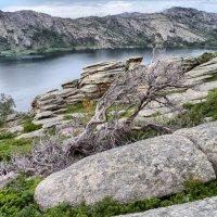 Сибинские озера. :: lev