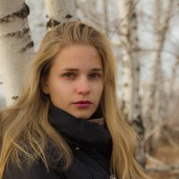 уже зима и хочется снега.. :: Николай Иванович Щенов