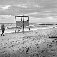 Зимний выходной на пляже :: Виктория Бондаренко