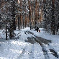 Уходя ноябрь оставил лужи... :: Лесо-Вед (Баранов)