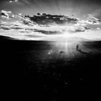 В лучах монгольского заката. :: Ирина Токарева