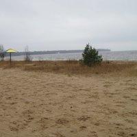Пляж в ноябре :: Маера Урусова