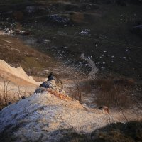 Утро на меловых горах апрель 2016 :: Юрий Клишин