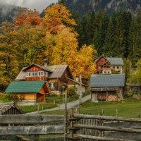 Осень в деревне :: Владимир Колесников