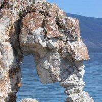 """каменный """"философ"""" :: Дмитрий Солоненко"""