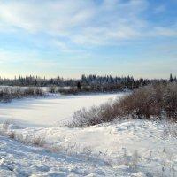 Речка под снегом :: Вера Андреева