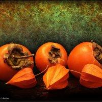 Оранжевые :: °•●Елена●•° Аникина♀