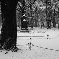 Александровский сад после метели :: sv.kaschuk