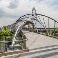 Мост Хеликс (Helix Bridge), он же мост ДНК, Сингапур. :: Edward J.Berelet