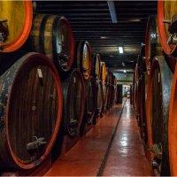 Про вино... :: Виктор Льготин