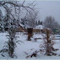 Зима... :) :: Любовь К.