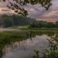 Светлая июльская ночь :: Наталия Горюнова