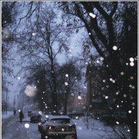 Декабрьский снежок :: muh5257