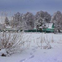 Зима идёт! :: Константин