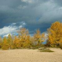 осень :: Елена Подоляк