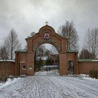 Антониево-Дымский монастырь :: Ольга Лиманская