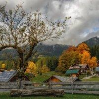 Осень в деревне. :: Владимир Колесников