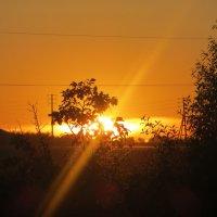 Русь называют святою.................. Летний вечер тих и свеж.......... :: Кристина Александрова