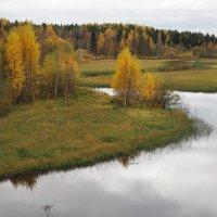 река Илес, Архангельская обл. :: Алена Малыгина