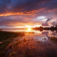 Летний закат :: Татьяна Афиногенова
