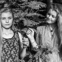 И светятся все изнутри :: Ирина Данилова