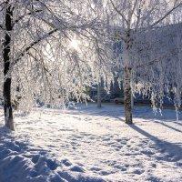 Зимнее настроение1 :: Евгений Вяткин