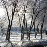 Зимнее настроение 3 :: Евгений Вяткин