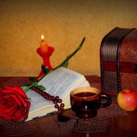 Недочитанная книга. :: nadyasilyuk Вознюк
